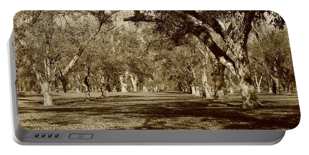Pecan Portable Battery Charger featuring the photograph Pecan Heaven by Gary Richards