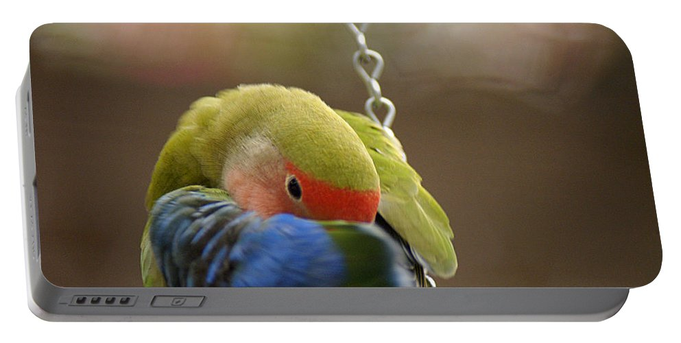 Clay Portable Battery Charger featuring the photograph Peek A Boo by Clayton Bruster