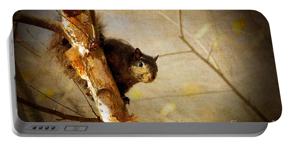 Squirrel Portable Battery Charger featuring the photograph Peek-a-boooo by Lois Bryan
