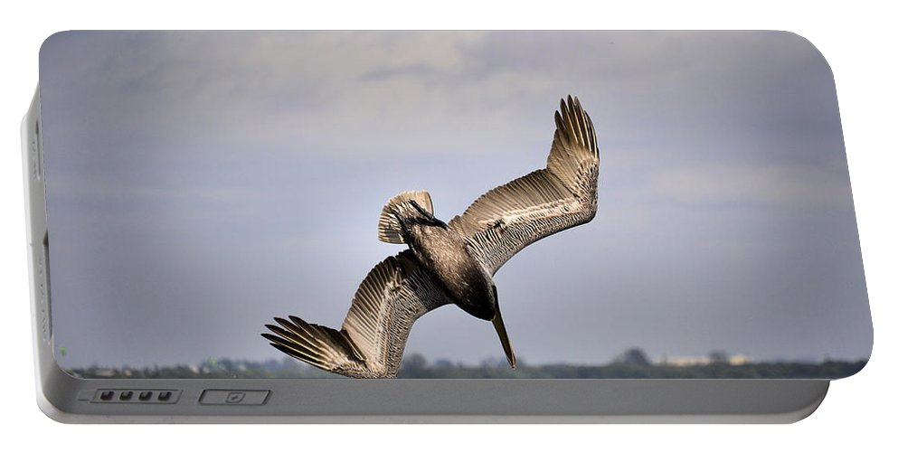Pelican Portable Battery Charger featuring the photograph Pelican Diving For Dinner by Deborah Weinhart