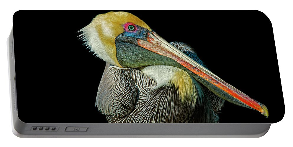 Portable Battery Charger featuring the photograph Pelican by Gabriel Jardim