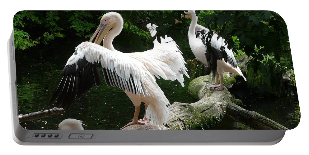 Bird Portable Battery Charger featuring the photograph Pelican Hideaway by Valerie Ornstein