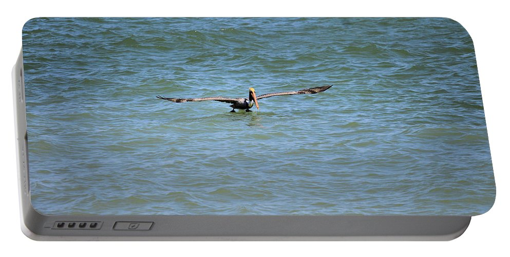 Pelican Portable Battery Charger featuring the photograph Pelican On The Move by Deborah Weinhart
