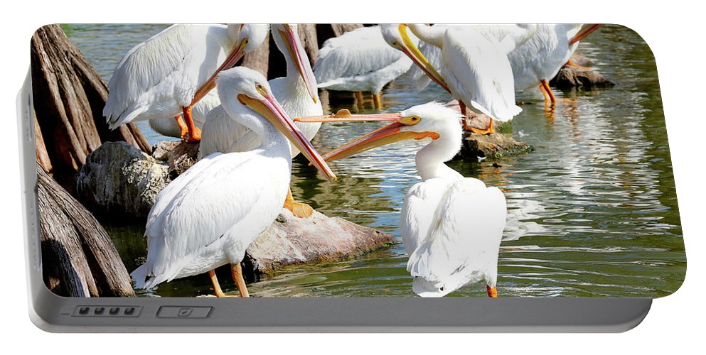 Fighting Birds Portable Battery Charger featuring the photograph Pelican Squabble by Carol Groenen