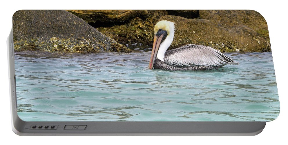 American Brown Pelican Portable Battery Charger featuring the photograph Pelican Trolling by Sally Weigand