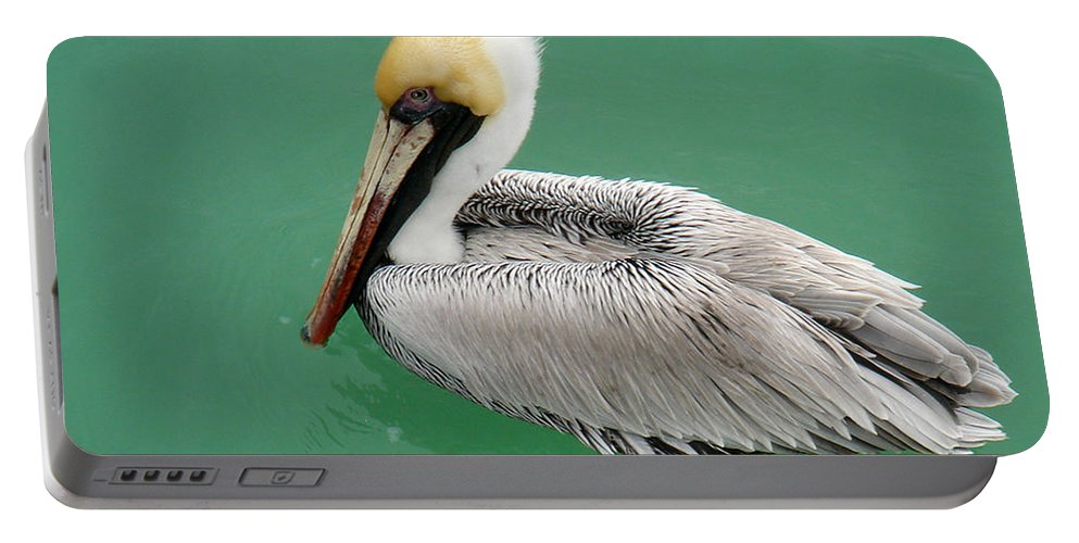 Florida Portable Battery Charger featuring the photograph Pelican's Cove by Chris Andruskiewicz