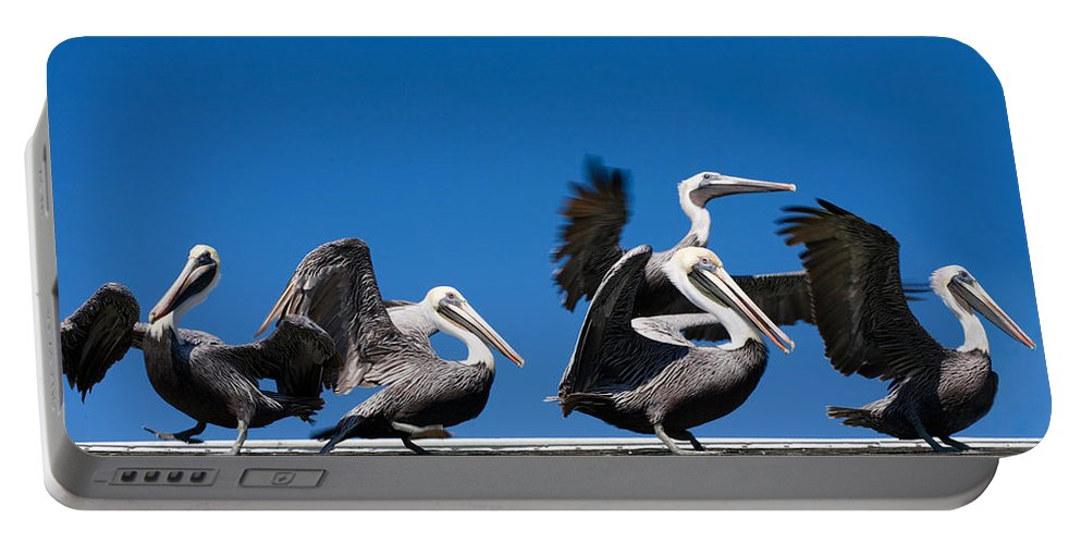 Pelicans Portable Battery Charger featuring the photograph Pelicans Take Flight by Mal Bray