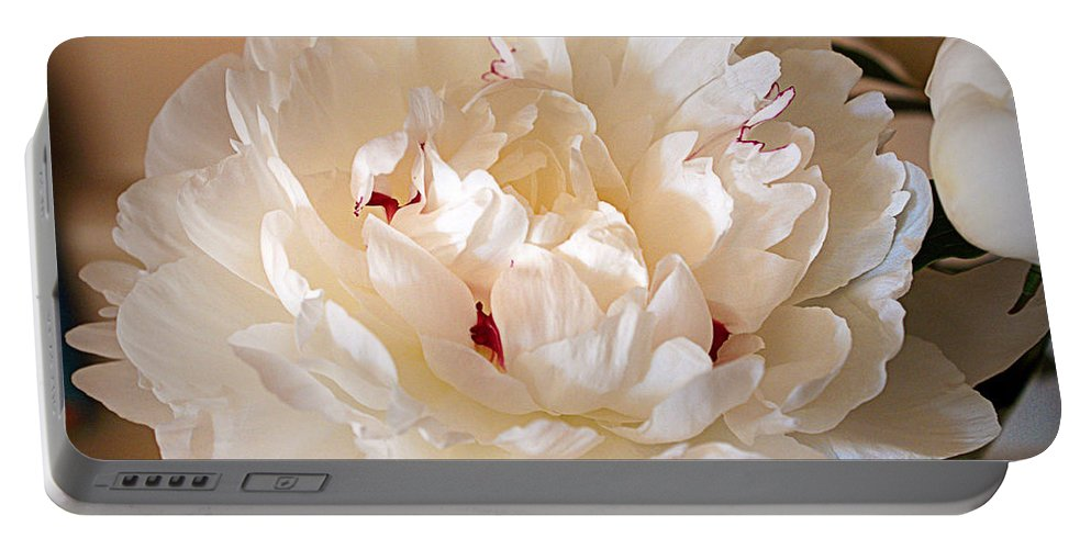 Peony Portable Battery Charger featuring the photograph Peony by Cricket Hackmann