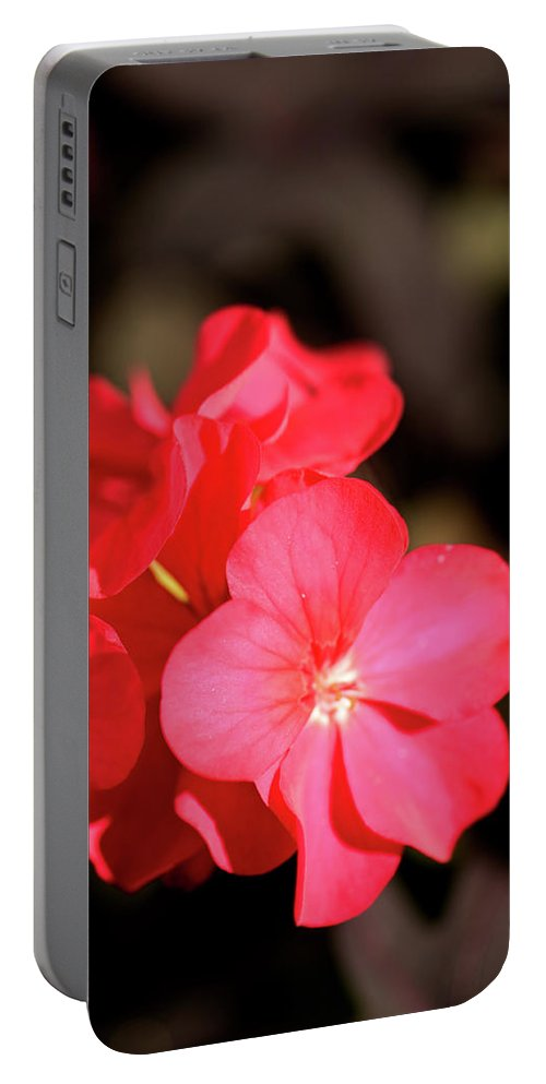 Flowers Portable Battery Charger featuring the photograph Perfect Cluster by Paul Mangold