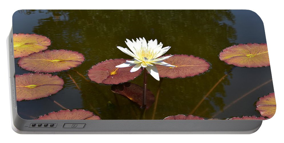 Landscape Portable Battery Charger featuring the photograph Perfect Lily by Lisa Kleiner