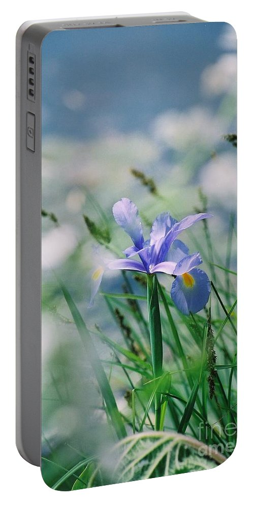 Periwinkle Portable Battery Charger featuring the photograph Periwinkle Iris by Nadine Rippelmeyer