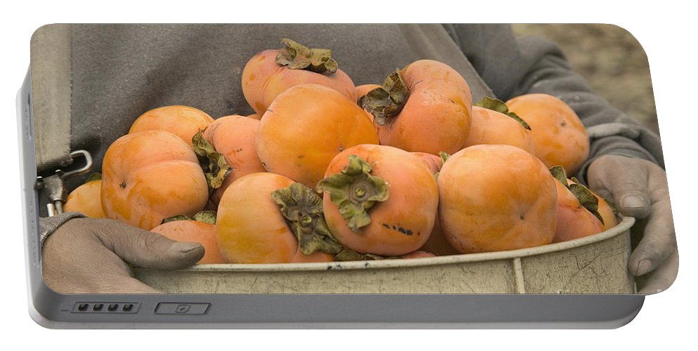 Fruit Portable Battery Charger featuring the photograph Persimmons In A Bucket by Inga Spence
