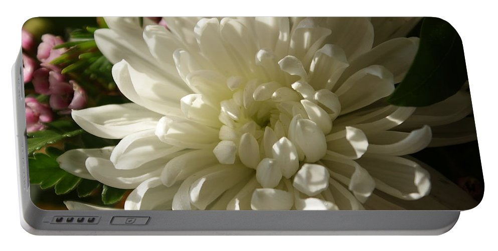 Flower Portable Battery Charger featuring the photograph Petals Profusion by Cricket Hackmann