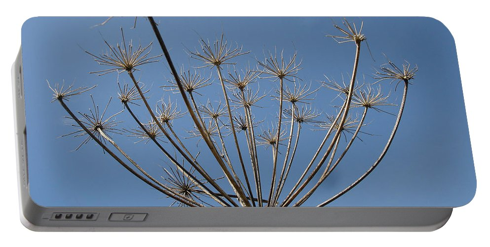 Flora Portable Battery Charger featuring the photograph Petite Parasols by Susan Baker