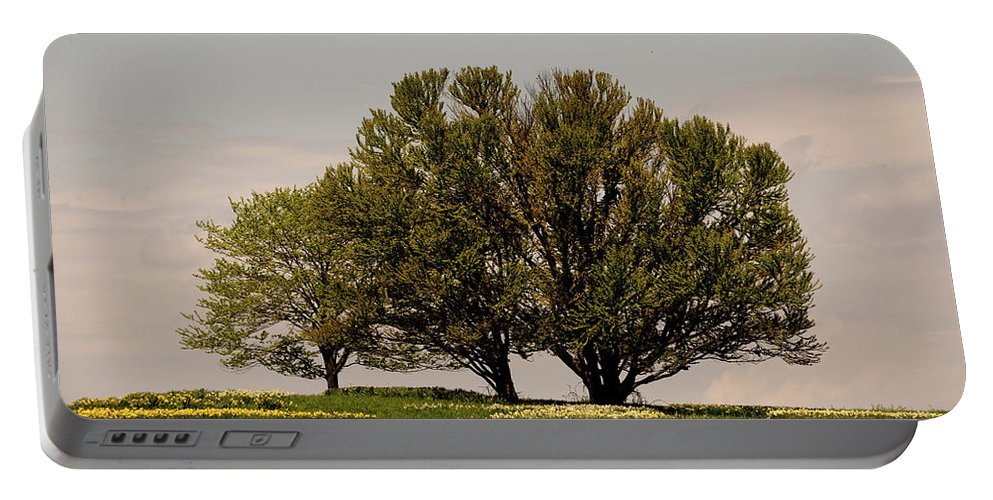 Tree Portable Battery Charger featuring the photograph Picnic Time by Trish Tritz