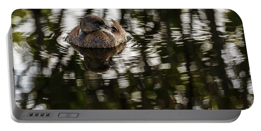 Duck Portable Battery Charger featuring the photograph Pied-billed Grebe by Les Greenwood