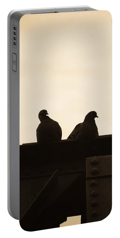Silhouettes Portable Battery Charger featuring the photograph Pigeon And Steel by Bob Orsillo