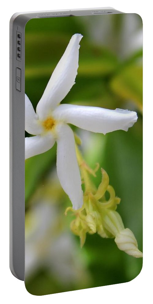 Flowers Portable Battery Charger featuring the photograph Pin Wheel by Adrian Cooch