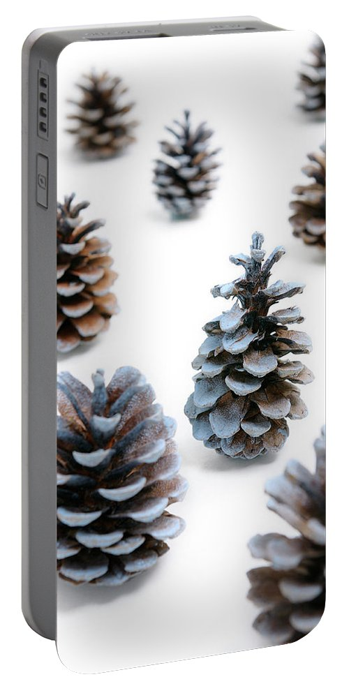 Pine Portable Battery Charger featuring the photograph Pine Cones Looking Like Christmas Trees On White Snowy Backgroun by Reimar Gaertner