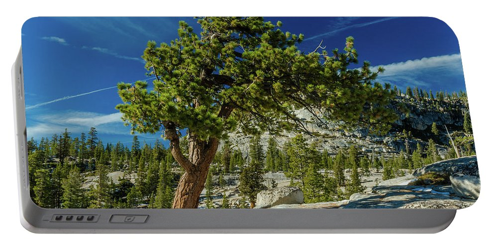 Landscape Portable Battery Charger featuring the photograph Pine Tree In Yosemite by Javier Flores