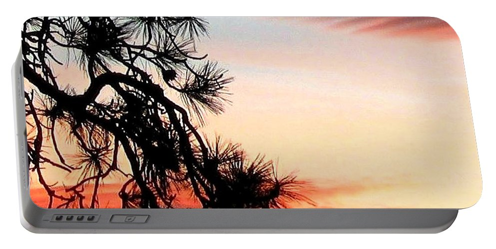 Sunset Portable Battery Charger featuring the photograph Pine Tree Silhouette by Will Borden