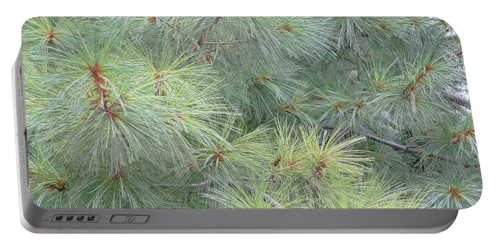 Pines Portable Battery Charger featuring the photograph Pines by Rhonda Barrett