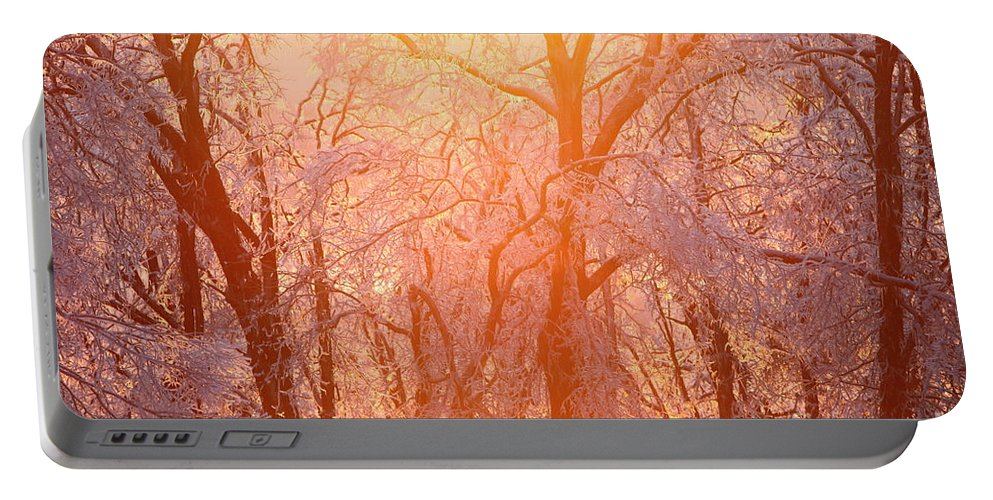 Pink Portable Battery Charger featuring the photograph Pink And Gold by Nadine Rippelmeyer