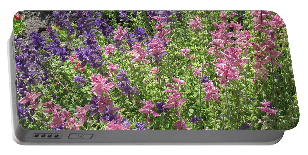 Flower Portable Battery Charger featuring the photograph Pink And Lavender by Brandy Woods