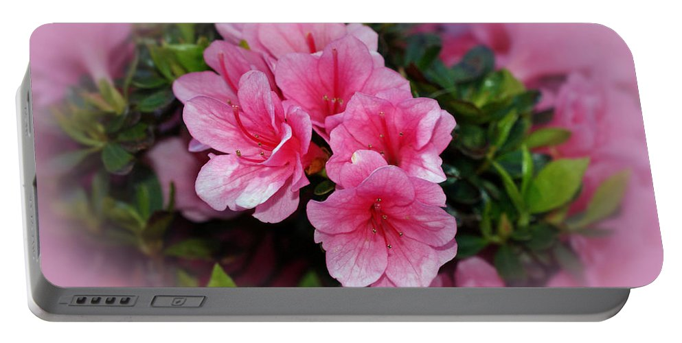 Azaleas Portable Battery Charger featuring the photograph Pink Azaleas by Sandy Keeton