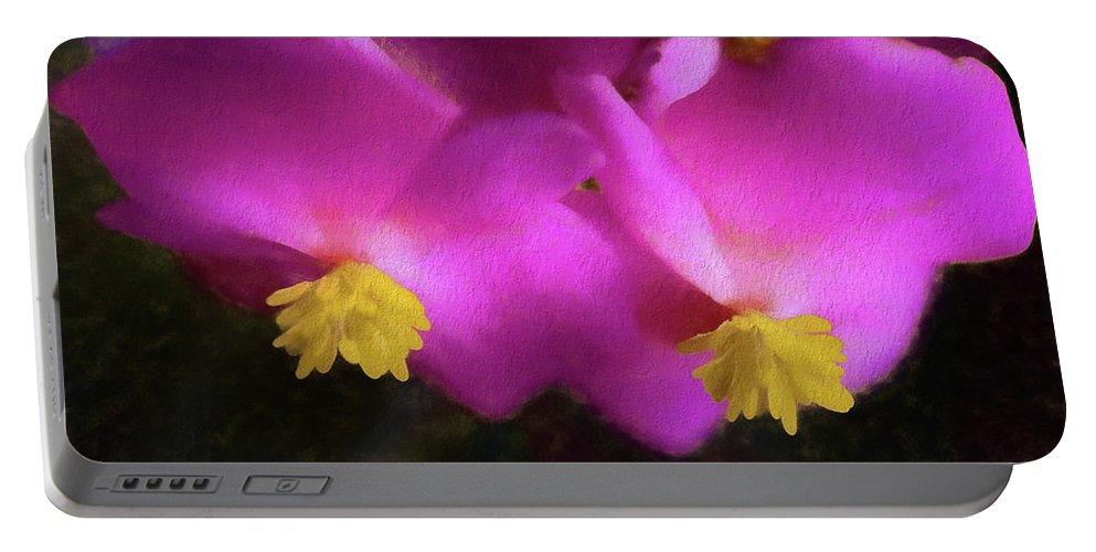 Begonia Portable Battery Charger featuring the photograph Pink Begonia In San Diego by Kenneth Roberts