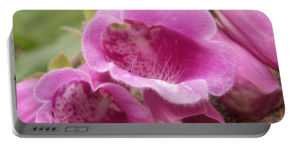 Flower Portable Battery Charger featuring the photograph Pink Bells by Alexis Ketner