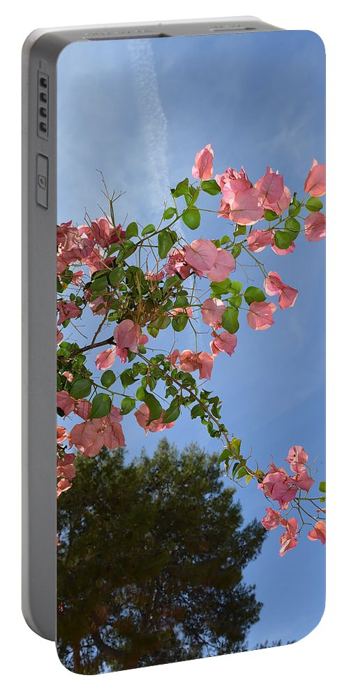 Bougainvillea Portable Battery Charger featuring the photograph Pink Bougainvillea by Aimee L Maher ALM GALLERY