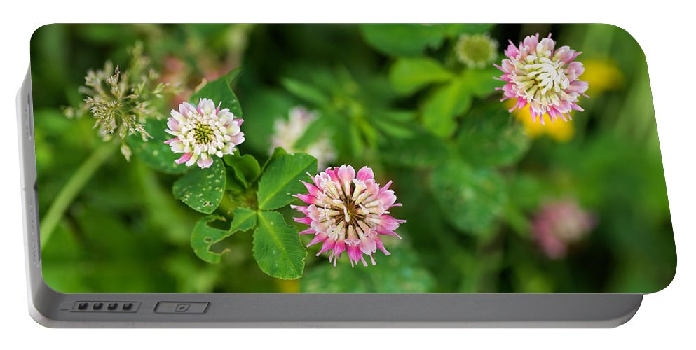 Clover Portable Battery Charger featuring the photograph Pink Clover Flowers by Les Palenik