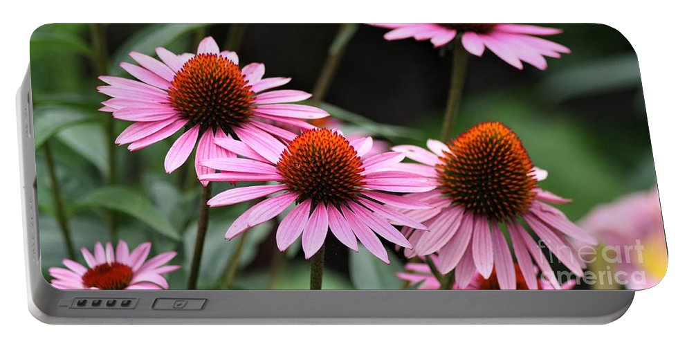 Pink Coneflowers Portable Battery Charger featuring the photograph Pink Coneflowers by Patti Whitten
