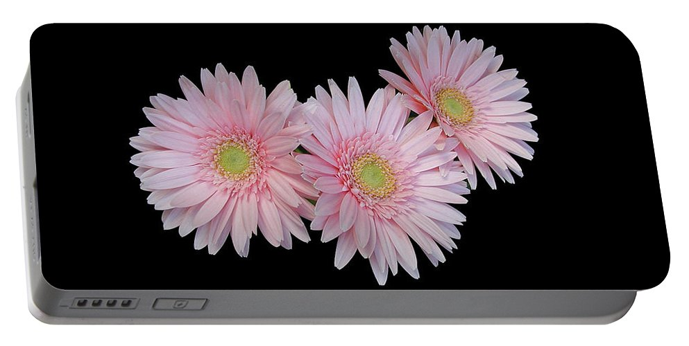 Pink Daisies Portable Battery Charger featuring the photograph Pink Daisies by Marvin Averett