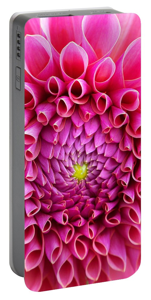 Flower Portable Battery Charger featuring the photograph Pink Flower Close Up by Anthony Jones
