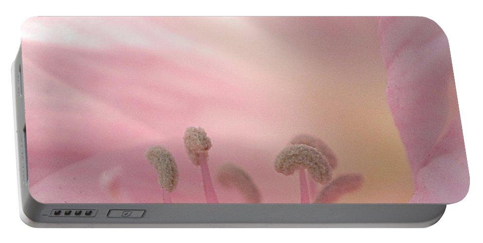 Flower Portable Battery Charger featuring the photograph Pink Flower by Jill Reger