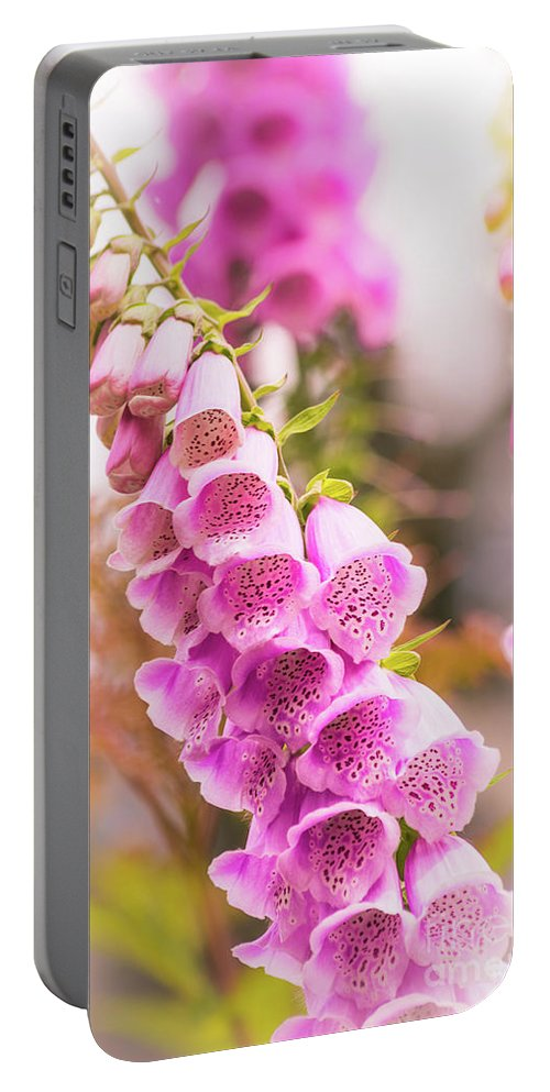 Flower Portable Battery Charger featuring the photograph Pink Foxglove by Heather Hubbard