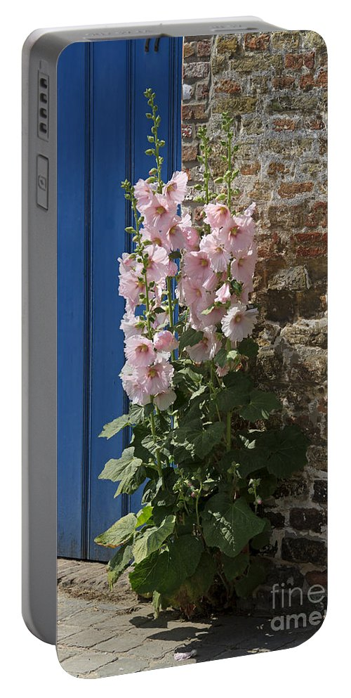 Pink Portable Battery Charger featuring the photograph Pink Hollyhocks Growing From A Crack In The Pavement by Louise Heusinkveld