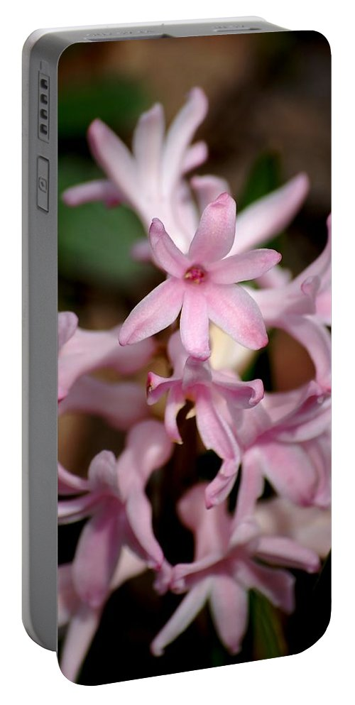Digital Photography Portable Battery Charger featuring the photograph Pink Hyacinth by David Lane