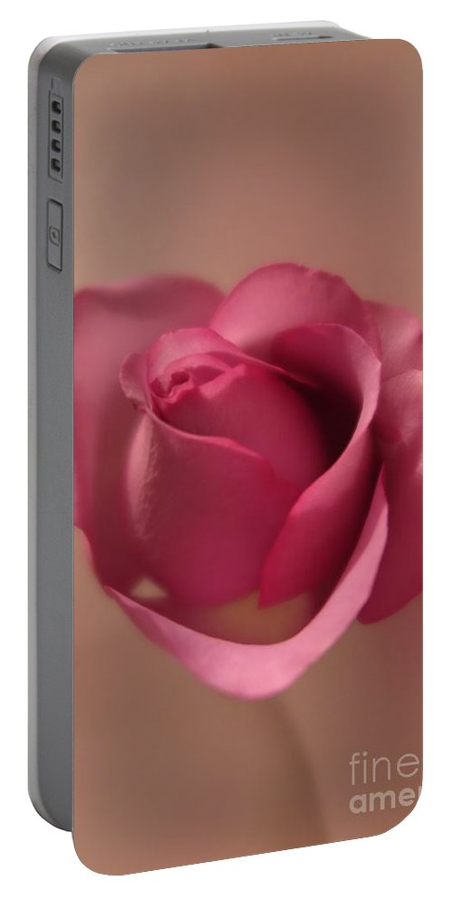 Floral Portable Battery Charger featuring the photograph Pink Rose 2 by Tara Shalton