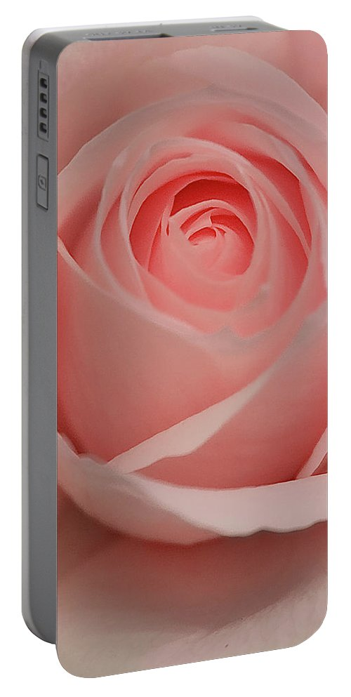 Coral Pink Rose Portable Battery Charger featuring the photograph Pink Rose by Brian Roscorla