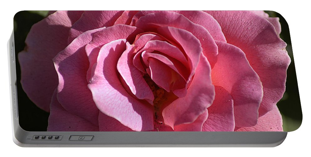 Clay Portable Battery Charger featuring the photograph Pink Rose by Clayton Bruster