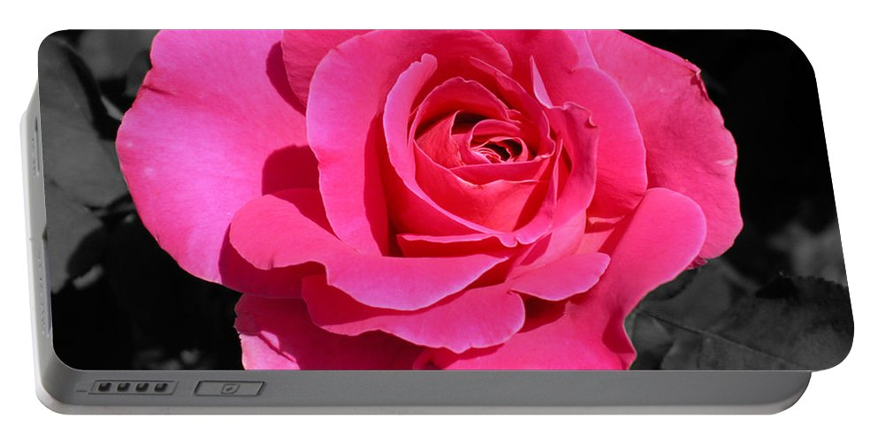 Pink Portable Battery Charger featuring the photograph Perfect Pink Rose by Michael Bessler