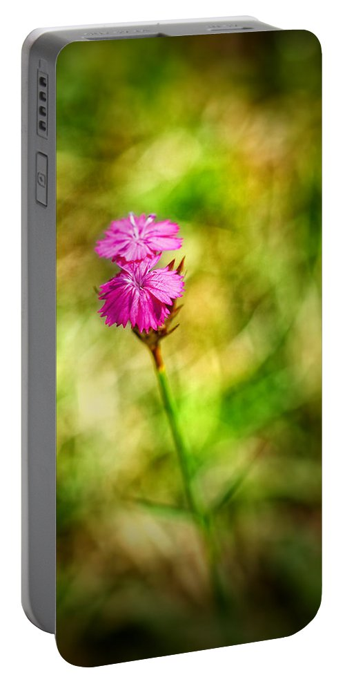 Blur Portable Battery Charger featuring the photograph Pink by Silvia Ganora