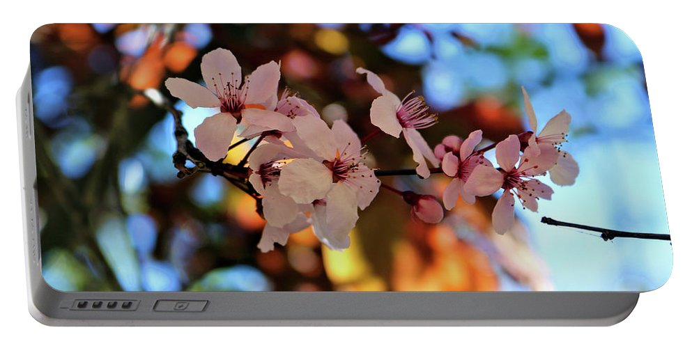 Pink Spring Flowers Portable Battery Charger featuring the photograph Pink Spring Flowers by Rosalyn Zacha