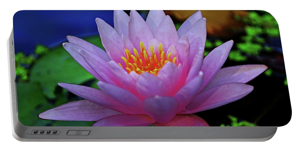 Flower Portable Battery Charger featuring the photograph Pink Water Lily 007 by George Bostian