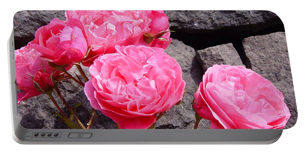 Roses Portable Battery Charger featuring the photograph Pinks On The Rocks by Loretta Luglio