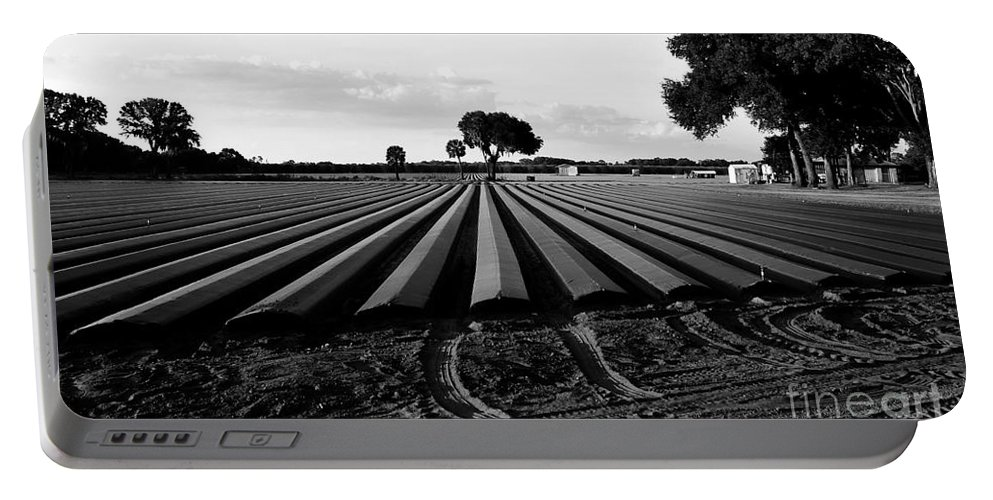 Farming Portable Battery Charger featuring the photograph Planted Fields by David Lee Thompson