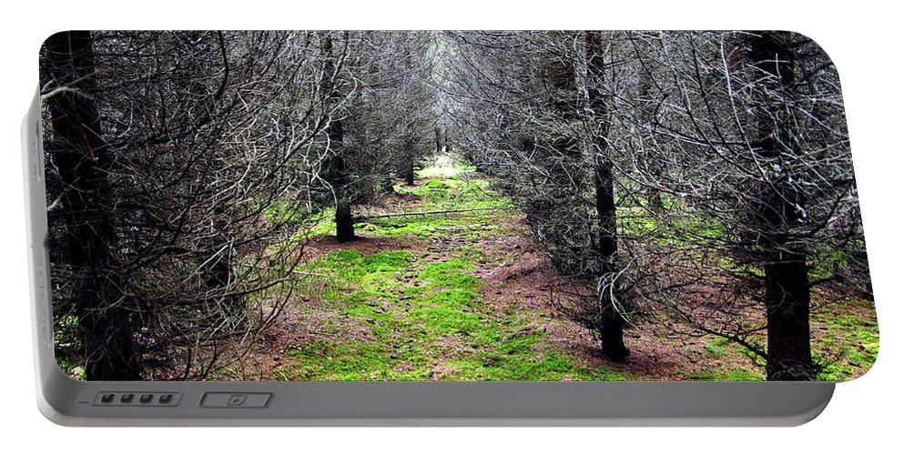 Spruce Portable Battery Charger featuring the photograph Planted Spruce Forest by Jarmo Honkanen